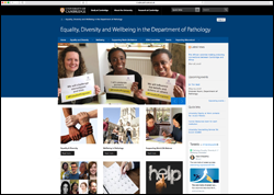 Equality, Diversity and Wellbeing website